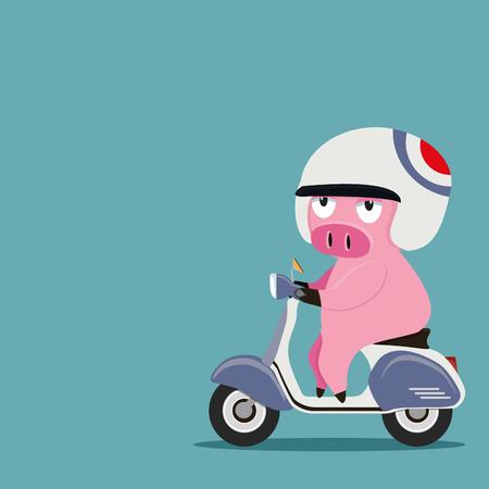 pig riding a motorbike Illusztráció