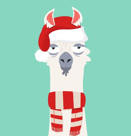 Alpaca with santa hat.