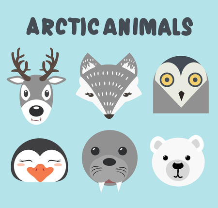 head cute artic animals