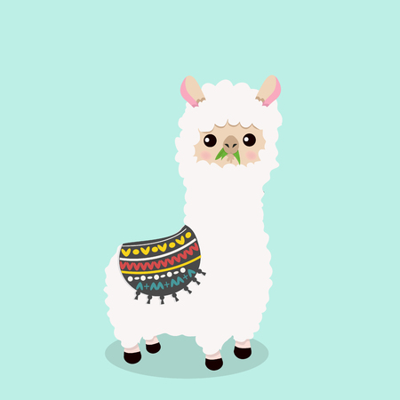 Cute alpaca fluffy eat grass in cartoon illustration. Illustration