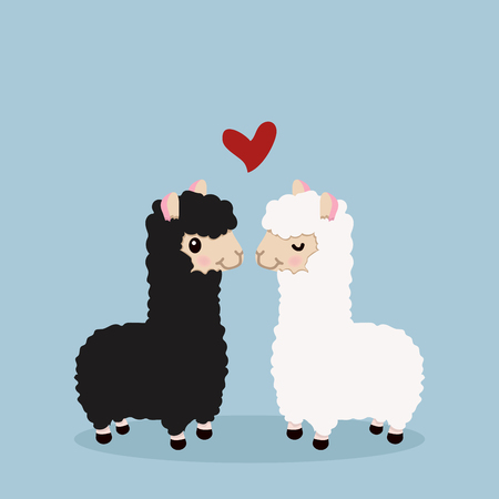 Alpaca couple in love