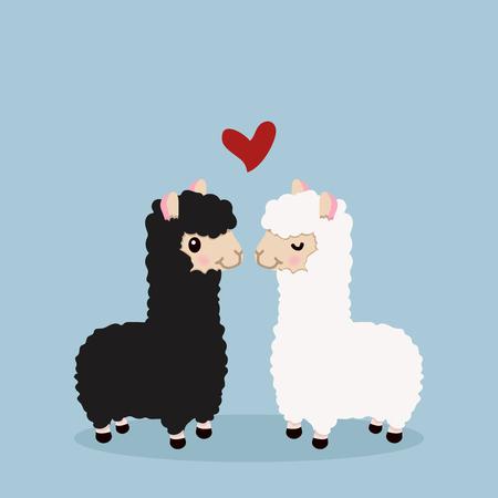 Alpaca couple in love