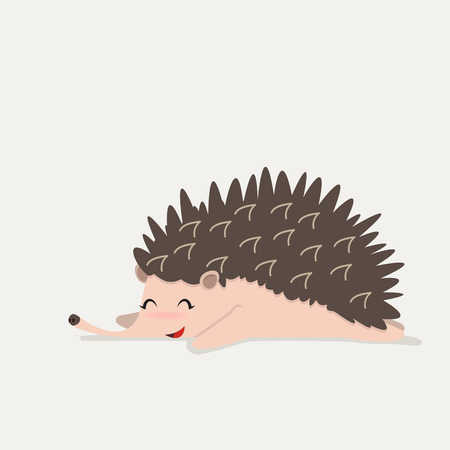 cute Hedgehog animal sleep, Vector illustration.