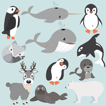 Artic animals cartoon collection