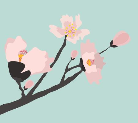 Blooming cherry tree illustration  イラスト・ベクター素材