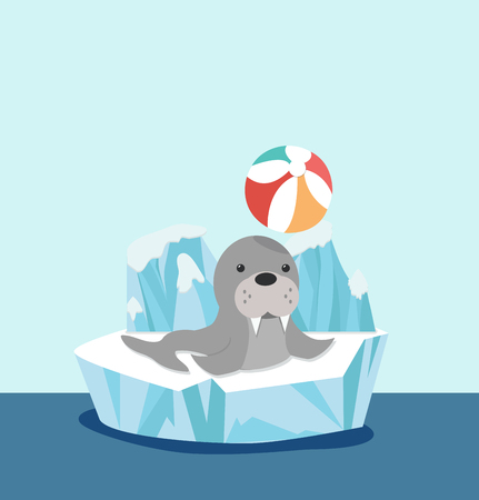 sealion on ice floe with ball