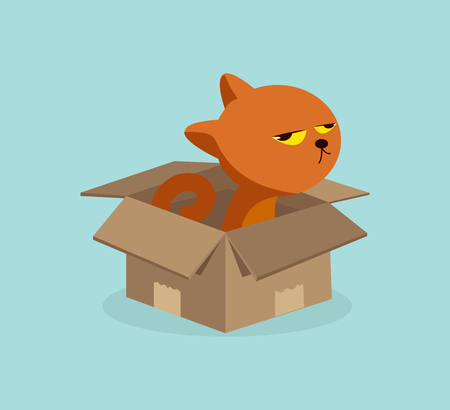 Cartoon  cat in the box