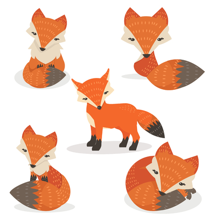 Cute foxes cartoon set in different poses 向量圖像