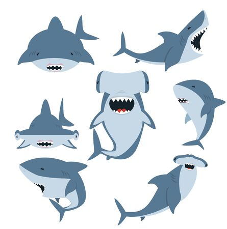 White shark and Hammerhead shark vector set