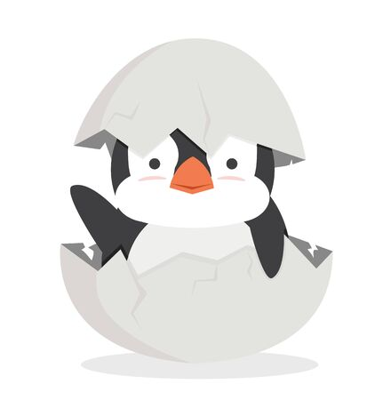 cute baby penguin fat hatched in egg vector Illustration