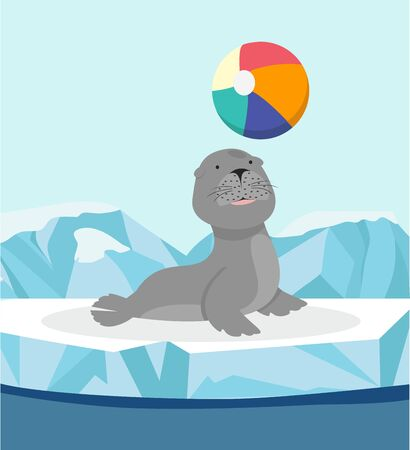 Seal cute sea animal on ice floe with ball