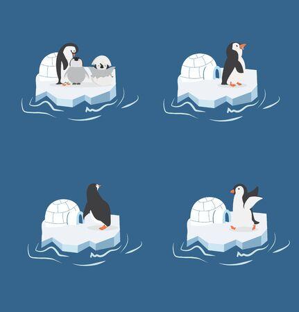 penguins on a piece of iceberg set Illusztráció
