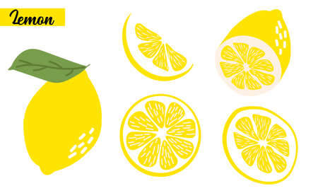 sliced on pieces lemons. Citrus collection. Lemon logo or icon  isolated on white background.  イラスト・ベクター素材