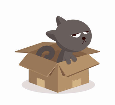 Cartoon cat in a box cardboard box vector