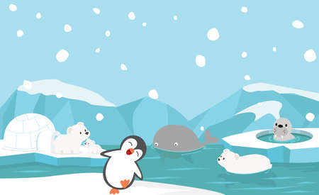 North pole animals winter season vector Çizim