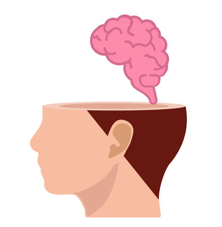 Brain in the human head think design vector concept