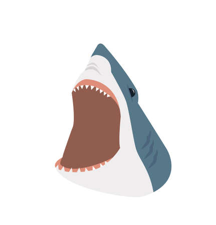Big shark with open mouth vector Çizim