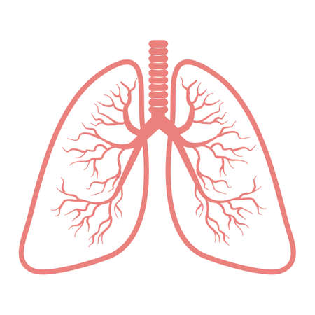 Lungs icon Isolated on white background logo Anatomy, medicine