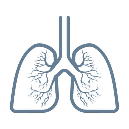 Lungs icon sign Isolated on white background 矢量图像