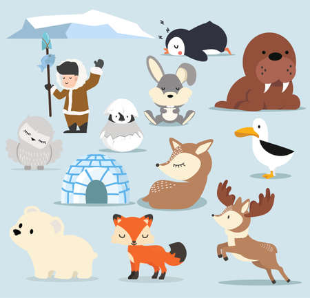 Cute Arctic Cartoon characters  set 矢量图像