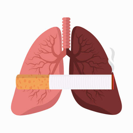 Comparing Lungs with Cigarette filters vector Illustration