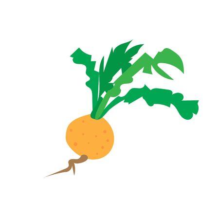 Fresh turnip vegetables logo designs icons