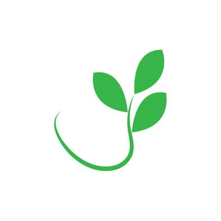 leafe logo design ilustration vector templat