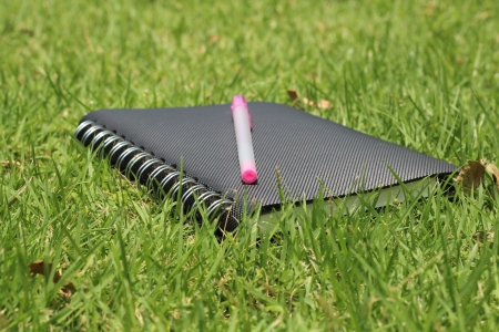 bussiness time: notebook and  pen on grass
