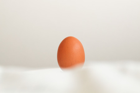 embolism: Closeup of a brown egg on a  table Stock Photo