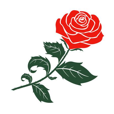 Rote Rose Design, Vektor-Illustration Standard-Bild - 35511603