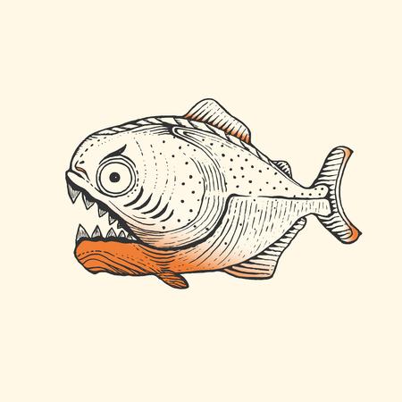 Piranha Fish Amazon,vector illustration