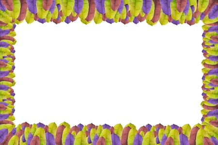 Rectangle colorful leaf border Stock Photo - 17730524