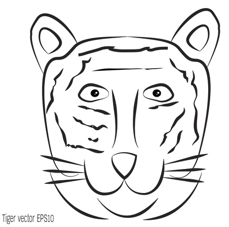 Line tiger illustration on white background Vector