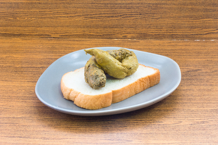 shit: A shit on bread concept Junk Food or Toxin Food or Dirty Food Stock Photo