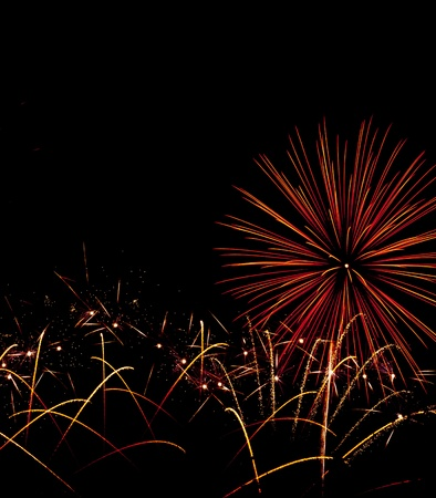 colorful of firework in night