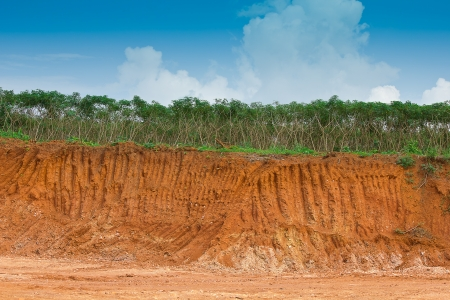 Soil under in cassava farm  Condition of the erosion as the cliff by human photo