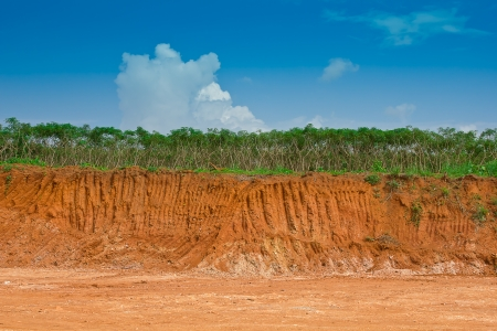 soil erosion: Soil under in cassava farm  Condition of the erosion as the cliff by human Stock Photo