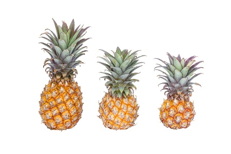 yellow pineapple isolated on white background photo