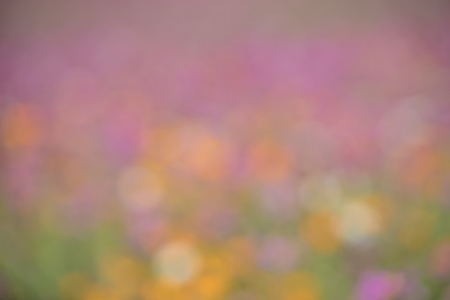 Artistic style - Abstract soft pink blurred background Stock Photo
