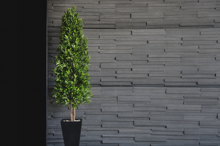 The green trees with modern wallpaper design