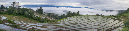 Rice fields on terrace in rainy season prepare for transplant with bamboo hut & foggy movement on the mountain  background at Pa Pong Peang village in  Chiang Mai, Thailand Stock Photo