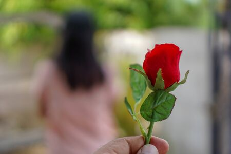 Red roses in the hands of men have blurred women as the background. The idea of reconciliation with fans Archivio Fotografico