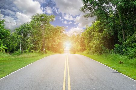 The road with trees on the side of the road, the idea of ​​strengthening the business success.