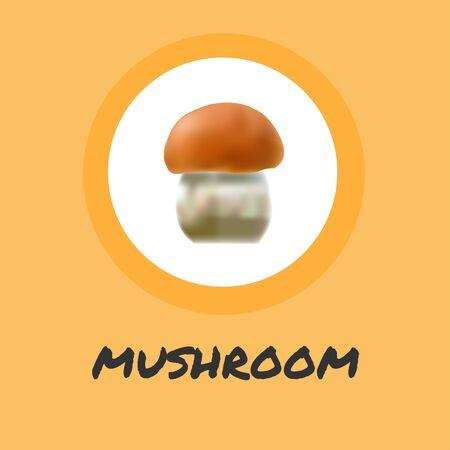 Mushroom illustration Sketch of food drawings isolated on orange background Stock Illustratie