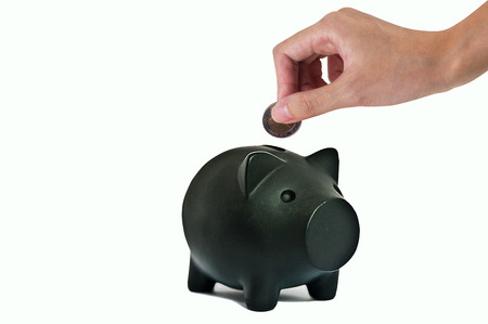 Hand putting coin into the piggy bank one black smiling money pig isolated on white