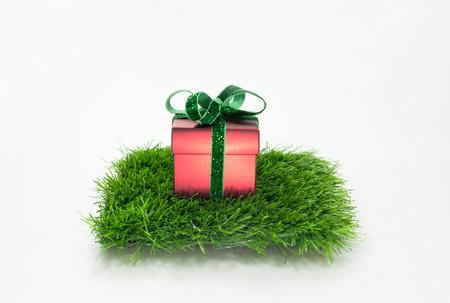 gift Christmas Sampler One Stocking Stock Photo - 23956572