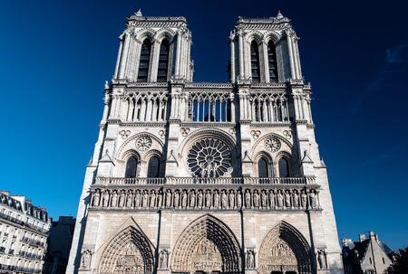 corcovado: PARIS - April 17, 2015: The view on the famous french landmark Notre Dame de Paris through the winter park on April 17, 2015 in Paris.