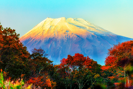 An Image of Fuji Mountain