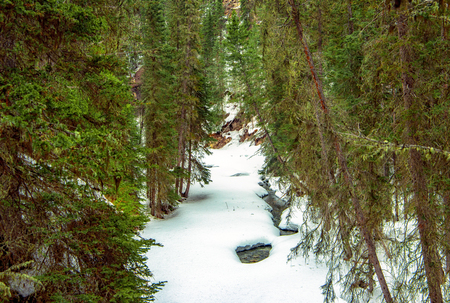 Banff National Park's Johnston Canyon  during winter