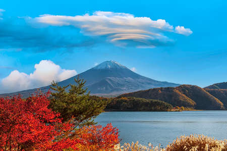 Mount Fuji with colorful leaves as foreground